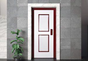 Лифтовая дверь HAS 01ral1013-3005