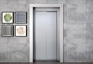 Двери HAS 20
